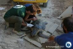 Το ερευνητικό του έργο παρουσίασε το Ινστιτούτο Αρχιπέλαγος στην Μασσαλία