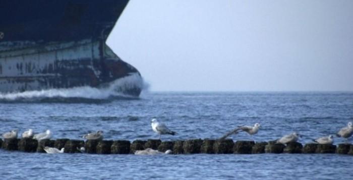Συλλήψεις για λαθρεμπόριο πετρελαίου στην Βενεζουέλα – εμπλέκεται ελληνικό πλοίο