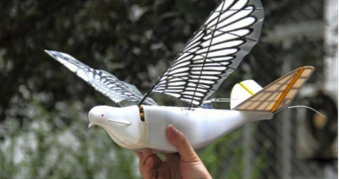 Περιστέρια - drones παρακολουθούν τους πολίτες στην Κίνα