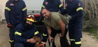 (vid&pics) Μύκονος: Πυροσβέστες έσωσαν σκύλο που έπεσε σε πηγάδι