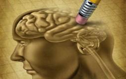 Ο εγκέφαλος ξεχνά προκειμένου να εξοικονομήσει ενέργεια