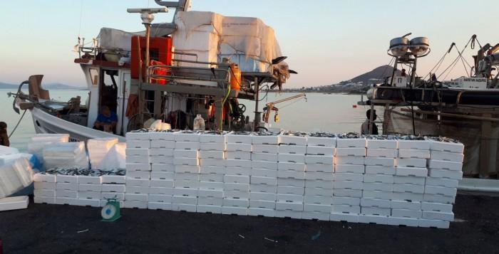 Κατάσχεση 2.288 κιλών αλιευμάτων στη Νάξο