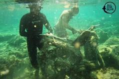 Μια ασυνήθιστη «ψαριά» στον Άγιο Χαραλάμπη!