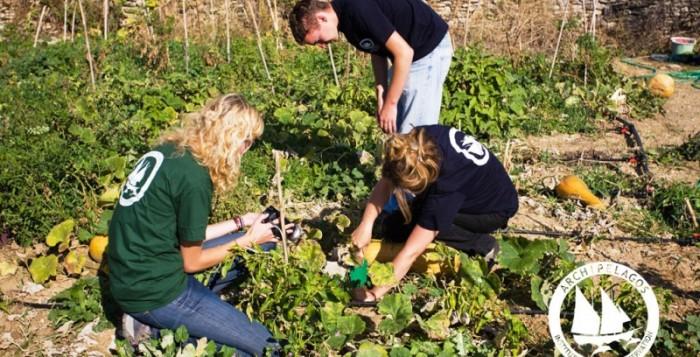 Η Τράπεζα Σπόρων Αιγαίου- Κιβωτός δίνει «ζωή» σε σχολικούς κήπους