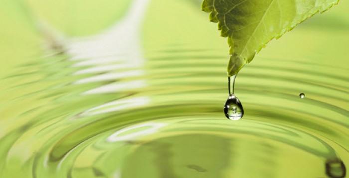 Μήνυμα του αντιπεριφερειάρχη κ. Μακρυωνίτη για την Παγκόσμια Ημέρα Περιβάλλοντος