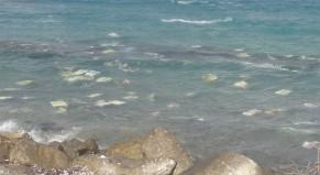 Έρευνα: 269.000 τόνοι πλαστικών απορριμμάτων στους ωκεανούς