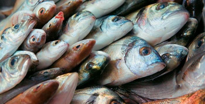 Ασπίδα κατά της κατάθλιψης η πολλή κατανάλωση ψαριών