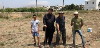 Δενδροφύτευση σε χωράφι της Ιεράς Μονής Παναγιάς Τουρλιανής, στην Άνω Μερά