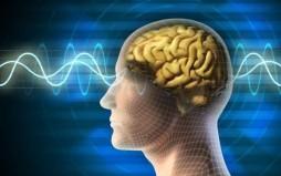 Υπάρχουν επιστημονικές αποδείξεις ότι μπορούμε να θεραπεύσουμε τον εαυτό μας;