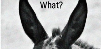 Έκθεση φωτογραφίας στη Δημοτική Πινακοθήκη Μυκόνου  με τίτλο «What?»