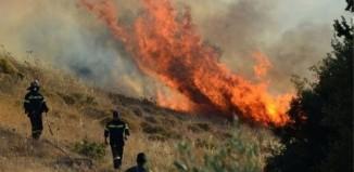 Πυρκαγιές στα Τσουκαλέικα Μεσσηνίας και στο Ζευγολατιό