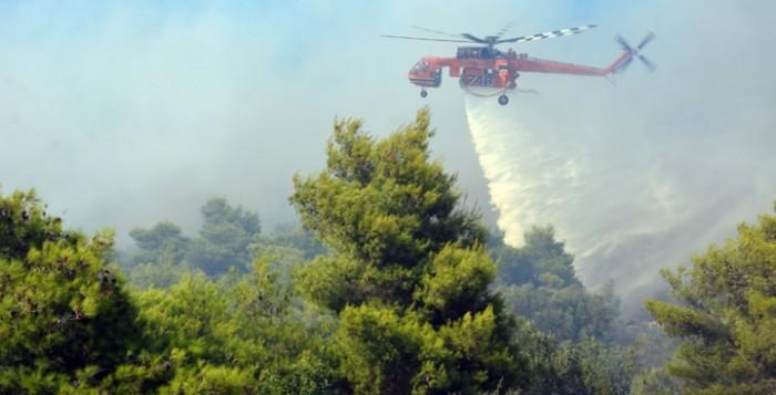 Πυρκαγιά σε δασική έκταση στον Μαραθώνα