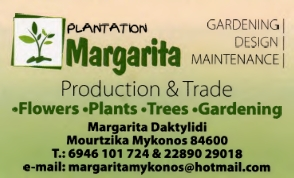 Margarita Plantation