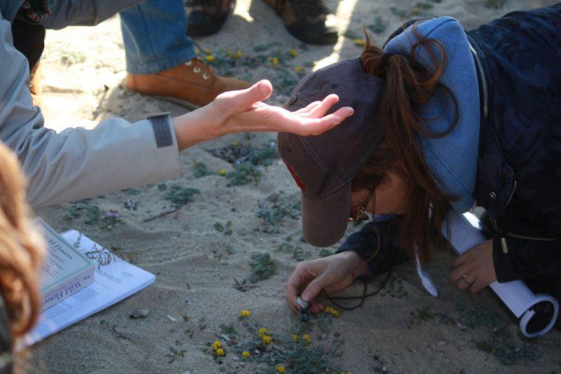 Μελέτη και αποκατάσταση περιβάλλοντος από φυσικές και ανθρωπογενείς καταστροφές