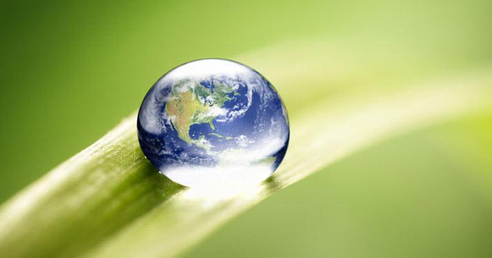 Παγκόσμια Ημέρα Περιβάλλοντος με δράσεις στον Κήπο του Μελετόπουλου