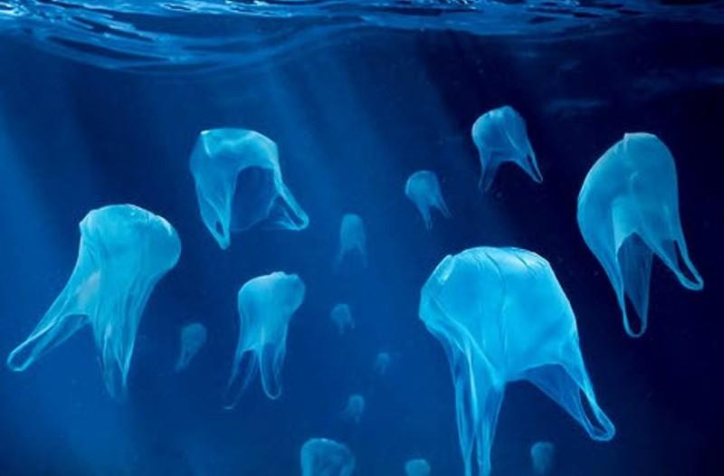 Σύρος: Σειρά δράσεων κατά της πλαστικής σακούλας
