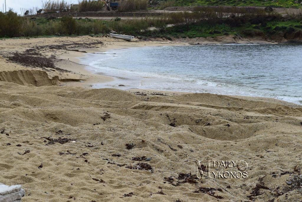 (φωτο) Μύκονος: Αποτράπηκε σοβαρή αλλοίωση στην παραλία της...