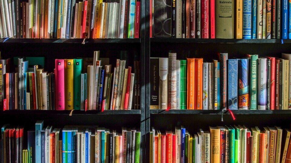 Επιβεβαιώνεται η εισαγωγή του μαθήματος της επιχειρηματικότητας στα σχολεία