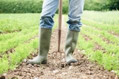 Ένταξη των αγροτών στο ΕΙΔΙΚΟ ΚΑΘΕΣΤΩΣ ΤΩΝ ΑΓΡΟΤΩΝ