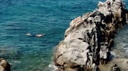 Αίσιο τέλος για 37χρονο ψαροντουφεκά