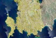 Βγήκε στον αέρα η ιστοσελίδα με τους κυρωμένους δασικούς χάρτες