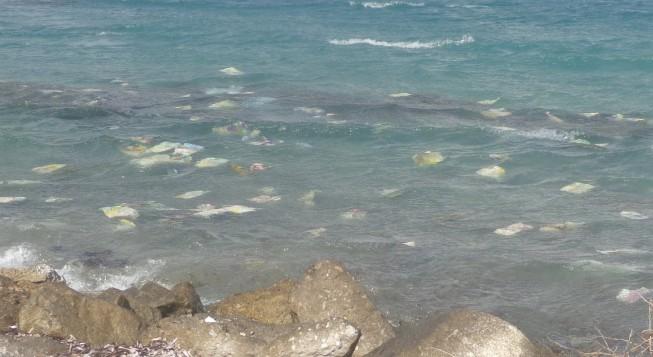 Περισσότερα τα πλαστικά από τα ψάρια στους ωκεανούς το 2050